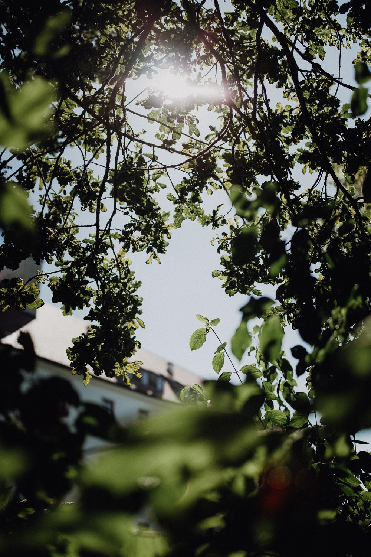 raissa simon photography destination wedding munich bayern schloss hohenkammer 004 - Andi + Joni