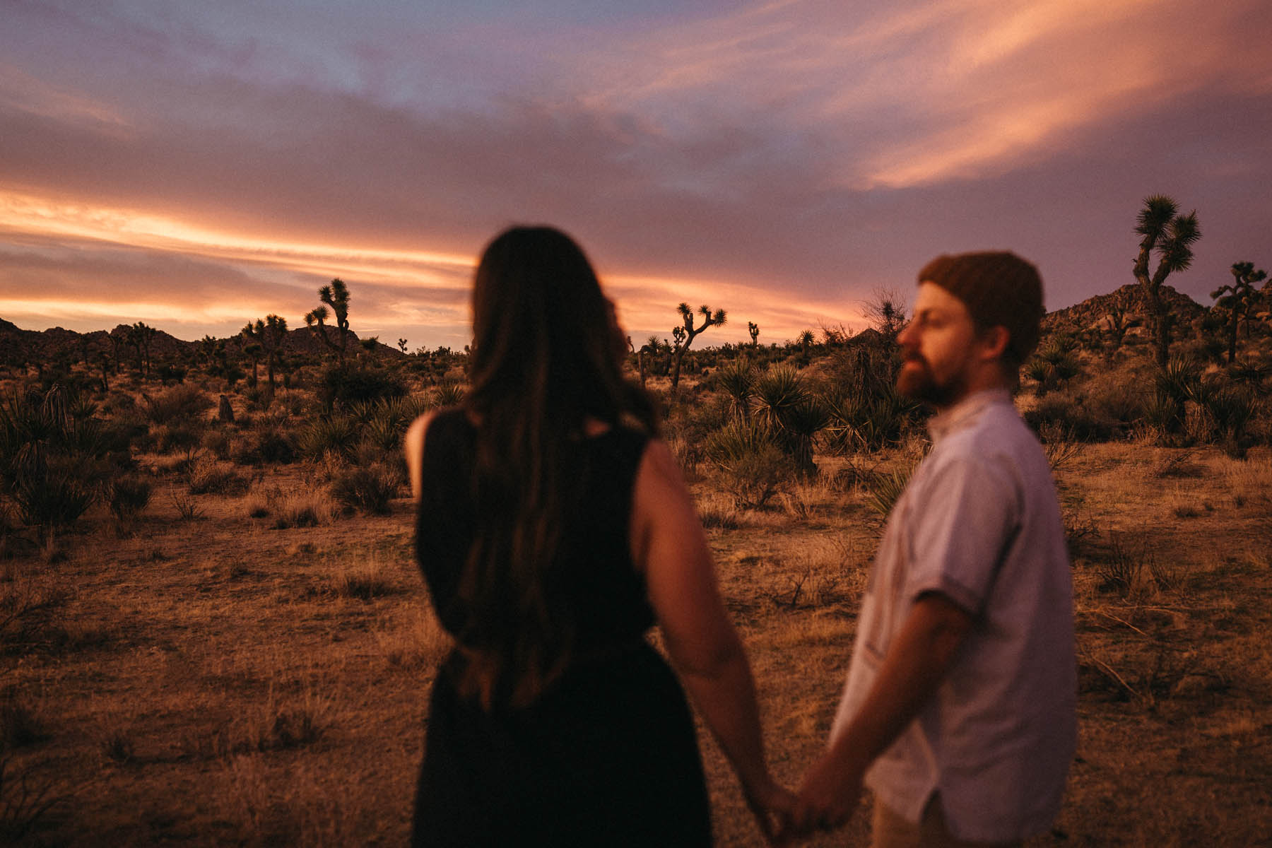 Amazing Sunset in Joshua Tree National Park - Raissa + SImon Fotografie