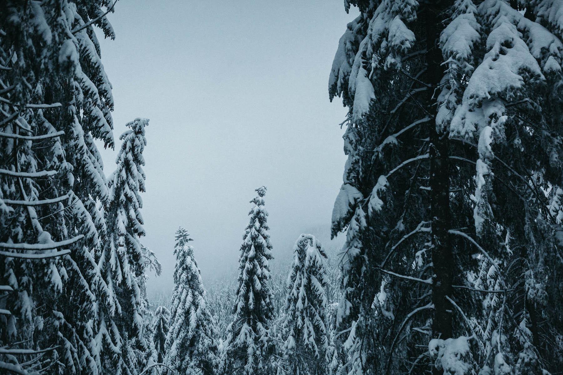 raissa simon fotografie paarshooting nais andre winter schwarzwaldhochstrasse 72 - Naïs + André